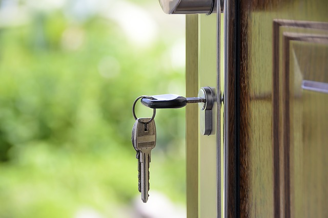 dveře domů