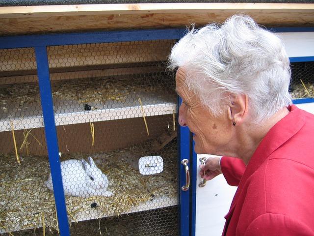 babka u králíkárny